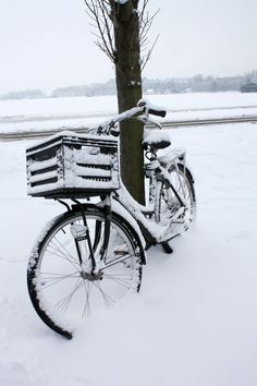 Bike in Egmond aan den Hoef, Holland I Love Winter, Winter Colors, Winter Time, Winter Magic, Winter's Tale, Snowy Day, Winter Beauty, Through The Looking Glass, Winter Christmas