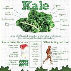 All Hail Kale! (Infographic) All Hail Kale! (Infographic) By Jason Wachob Did you know that kale has more iron than beef? Or more calcium than milk? These are just a few of the interesting facts in this infographic on kale from nutribullet. Get Healthy, Healthy Tips, Healthy Choices, Healthy Recipes, Healthy Herbs, Healthy Foods, Healthy Soup, Healthy Weight, Healthy Quotes