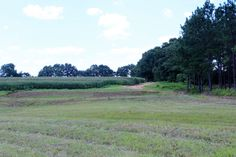 Have the Master Rack and Master Tract! Apx 188 acres for 275k with an additional 20 acre parcel available. Two spring fe