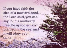 Luke 17:6 Luke 17, Gospel Of Luke, Mulberry Tree, Mustard Seed, Seeds, Faith, Sayings, Plants, Lyrics