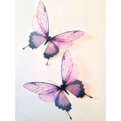 4 Pink Champagne 3D Butterflies Butterfly Decal Sticker Home Decor... ($16) ❤ liked on Polyvore featuring home, home decor and butterfly home decor