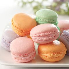 Nielsen-Massey Vanillas | Recipes | French Almond Macaroons