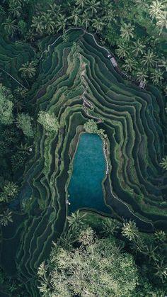 86c75fdd64305d Landscape Drone Photography   Dean Raphael photographer. Bali. Vue Du Ciel,  Paysage Voyage