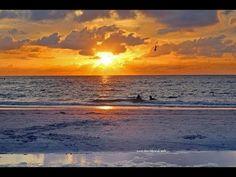 Clearwater Beach, Bradenton Beach, Anna Maria Beach, Anna Maria Island, Bffs, Sunset Vacations, Indian Shores, Videos Tumblr, Florida
