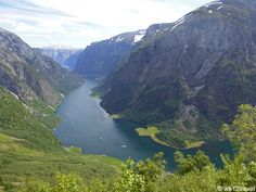 A suggestion for an steep yet beautiful half day hike in Norway's prettiest fjord: Nærøyfjord. Rimstigen is breathtaking yet totally worth doing!