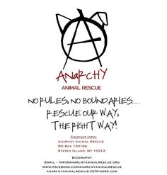 Anarchy Animal Rescue