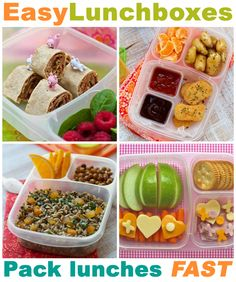Hundreds of lunch packing ideas, tips and more!