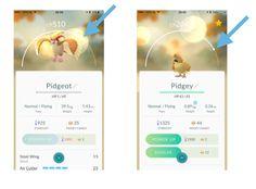 Pokemon Go Evolving Guide - Best Strategies & How To Tips  #Evolving #pokemongo http://gazettereview.com/2016/07/pokemon-go-evolving-guide-best-strategies-tips/