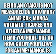 Thank you! Those posts questioning people if their Otakus or real fans and say to name five animes/mangas, etc, really bug me.