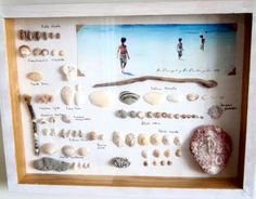 A Wall of Beach and Sea Memories in Frames - Completely Coastal