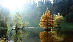 US3A1471.JPG by zenonautryb. Please Like http://fb.me/go4photos and Follow @go4fotos Thank You. :-)