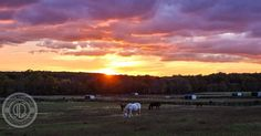 A #fall #sunset over the NJ Equine Clinic in Millstone Township #monmouthcounty #jshn #canon_official #canon5d #horses #horsesofinstagram #hdr #jersey #hdr_captures #hdr_professional #hdr_oftheworld #color #colour #orange #cloudporn #pin