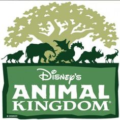 Share YOUR Magical Disney Memories: Animal Kingdom - www.wdwradio.com