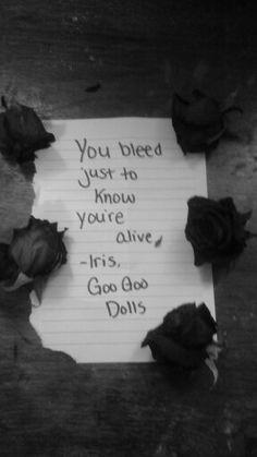 Favorite quote from Iris by Goo Goo Dolls