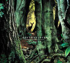 "David Sylvian, ""Manafon"""