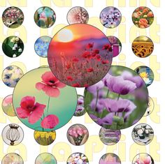 40 Flowers Digital Party Stickers Circles size 1'', 20mm, 16mm, 14mm, 12mm sheet…