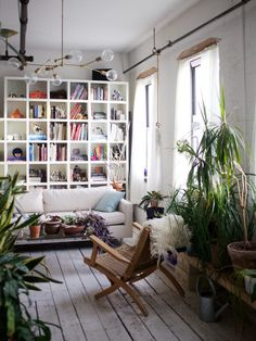 The Accidental Jungle: Shabd Simon-Alexander's Houseplants in a New York Apartment: Gardenista