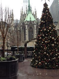 Free Things to Do in New York City in the Winter - Traveling Mom