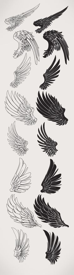 Wings/Black and white арт в 2019 г. tatuajes de alas, dibujo de alas и cosa Tattoo Sketches, Tattoo Drawings, Drawing Sketches, Body Art Tattoos, Art Drawings, Drawing Drawing, Sketching, Wing Tattoos, Tattoos Skull