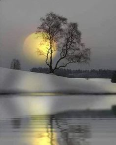 The Story Of Us isn't Myth . it will continue to give back . give back in totally unforeseeable beaute ways . thank you for sharing my vision. Beautiful Moon, Beautiful World, Moon Photography, Landscape Photography, Winter Scenery, Moon Art, Nature Wallpaper, Nature Pictures, Amazing Nature