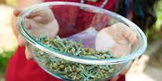 Free herbal ecourses with Herbmother, Latisha of Sunflower Herb Farm