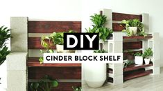 DIY CINDER BLOCK SHELF! EASY ROOM DECOR PROJECT! Cinder Block Shelves, Diy Room Decor, Home Decor, Entryway Tables, Shelf, Easy, Projects, Furniture, Log Projects