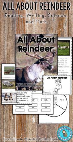 All About Reindeer First Grade Writing, Teaching First Grade, Teaching Math, Preschool Christmas, Christmas Activities, Christmas Worksheets, Reading Response, Kindergarten Writing, Writing Resources
