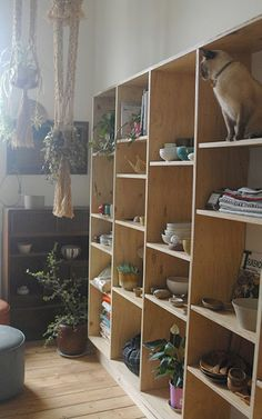 Shelving with alcoves to put quilts, greenery, collected items and memories.