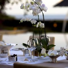 """Sleek Orchid Centerpieces-a """"lower profile"""" arrangement.  Can be done in a container that matches decor"""