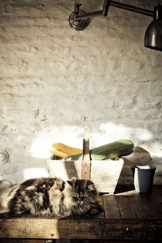 Cálida, acogedora, actual, con toques bohemio chic, llena de piezas contemporáneas y con personalidad propia,  así es la casa de verano de los editores de Milk Magazine - Milk Magazine editor's home