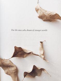 A Darker Shade of Magic || V.E. Schwab