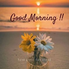 Latest good morning images with flowers ~ WhatsApp DP, Love DP, DP Images, WhatsApp DP For Girls Good Day Images, Gud Morning Images, Good Morning Beautiful Pictures, Latest Good Morning Images, Good Morning Images Flowers, Morning Quotes Images, Morning Pictures, Good Morning Quotes, Morning Pics