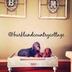 Custom made dog beds