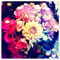 """□■ 「花束」が入っている歌謡曲 ♪♪ □■#bouquet879    歌謡曲で「花束」がけっこう歌われているの知ってますか??    1990年代〜現在まで調べると…53件も!!    本日は、ちょっと気になる1フレーズを紹介 ♪    曲名:花束~幸せにしたくて~  歌手:Jam9    -------------------------  今、大切なあなたに花束を  どんな色を選べばいいのかわからないけど…  不器用で、無愛想で、どうしようもない、俺なりに  心を込めて届けたい…  -------------------------    相手のことを考えながら花を選んで    """"どんな色がいいだろう…どんな雰囲気がいいだろう…  どれぐらいのサイズがいいだろう…どうやって渡そう…""""    そんなこと考えながらドキドキ・ワクワクする(しちゃう)  のってなんかステキですよねー."""