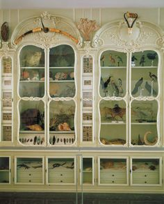 Bonnier de la Mosson's Second Cabinet of Natural History as it stands today. Bibliotèque centrale du Muséum national d'Histoire naturelle, Paris.   I want a room full of curiosity cabinets like this.