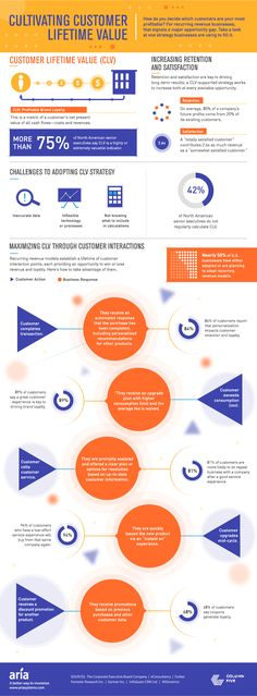Cultivating Customer Lifetime Value #infographic #Business