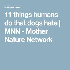 11 things humans do that dogs hate | MNN - Mother Nature Network