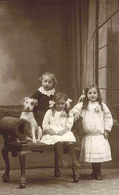 Explore Libby Hall Dog Photo's photos on Flickr. Libby Hall Dog Photo has uploaded 835 photos to Flickr.