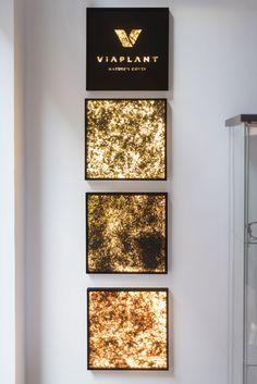 VIAPLANT - LIGHTS New Perspective, Open Up, Curtains, Lights, Interior Design, Home Decor, Nest Design, Blinds, Decoration Home