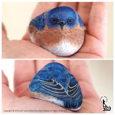 Bluebird. Natural Shape Stone Animal Paintings. By Akie Nakata.