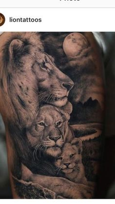 Lion Family Tattoo - Best Lion Tattoos For Men: Cool Lion Tattoo Designs and Ideas For Guys Lion Cub Tattoo, Lion And Lioness Tattoo, Lion Tattoo Meaning, Cubs Tattoo, Lion Head Tattoos, Mens Lion Tattoo, Lion Tattoo Design, Baby Tattoos, Body Art Tattoos