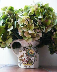 Hydrangea flowers drying in a decorative ceramic jug http://driedflowercraft.co.uk