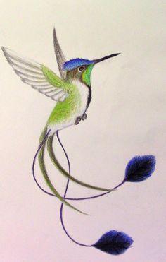 Hummingbird Discover Explore best spatuletail art on DeviantArt Marvellous Spatuletail Hummingbird by mysteriouswhitewolf Hummingbird Drawing, Hummingbird Pictures, Colorful Hummingbird Tattoo, Exotic Birds, Colorful Birds, Bird Drawings, Animal Drawings, Pretty Birds, Beautiful Birds