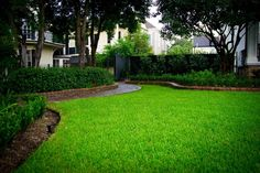Traditional Garden District 5 shorter brick edging nd greenery instead of wall?