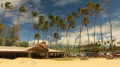 Baldwin Beach is a local favorite! #Maui #NorthshoreMaui #MauiBeaches #MauiNoKaOi