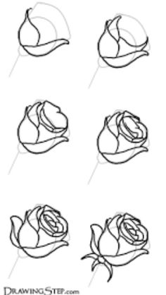 How to draw a tilted rose
