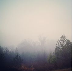 Click to read MISTY MORNING, a story by Melody Rowell about a picture by Jaemin Riley.