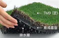 smart green roof for your balcony? TM9ターフマット http://www.toyota-roofgarden.co.jp