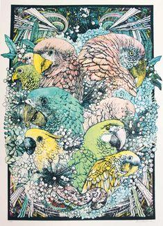 'Jungle Book - Parrots Colour Edition' - Lucille Clerc