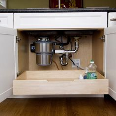 Kitchen Design Ideas, Pictures, Remodels and Decor under sink organization